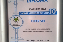 Veterinarul Clinica Veterinara Flippervet