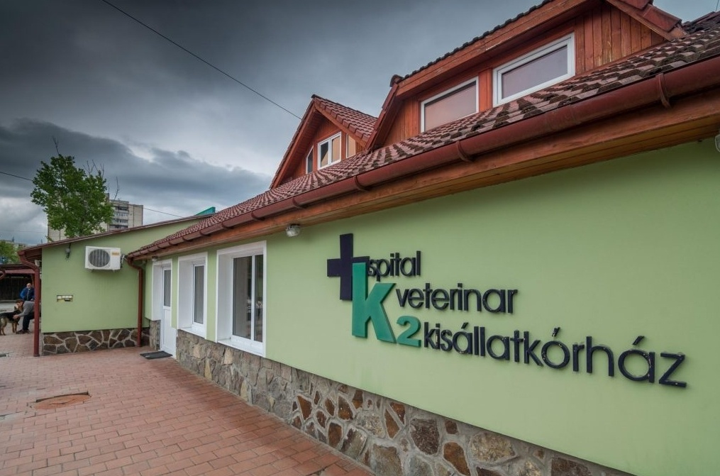 cabinet veterinar sf gheorghe