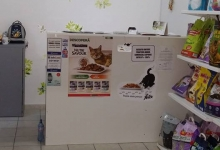 Veterinarul Pet's Choice